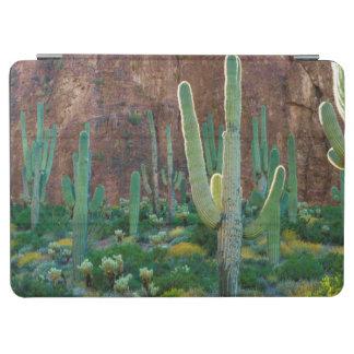 米国、アリゾナ。 崖によるサグアロのサボテン分野 iPad AIR カバー