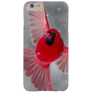 米国、インディアナ、インディアナポリス。 オスの(鳥)ショウジョウコウカンチョウ BARELY THERE iPhone 6 PLUS ケース