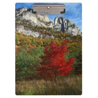 米国、ウェストヴァージニアの小ぎれいなノブセネカ人の石 クリップボード