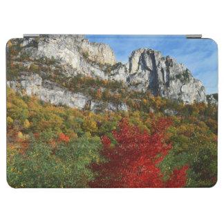 米国、ウェストヴァージニアの小ぎれいなノブセネカ人の石 iPad AIR カバー