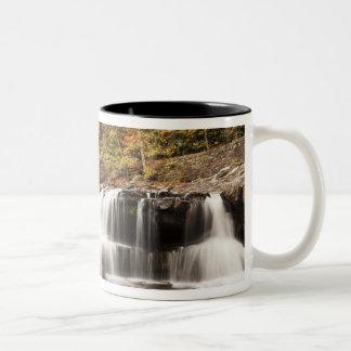 米国、ウェストヴァージニア、Clifftop。 バブコック州 ツートーンマグカップ