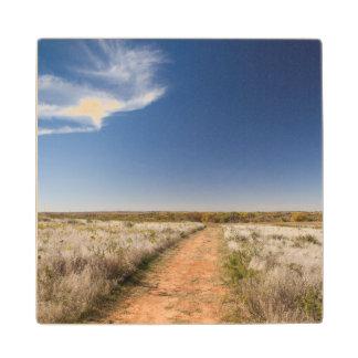 米国、オクラホマの黒いやかんの国民の牧草地 ウッドコースター