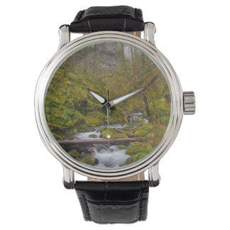 米国、オレゴンのコロンビアの峡谷 腕時計