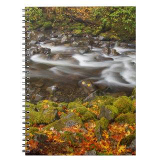 米国、オレゴンのコロンビア川の峡谷、タナーの入り江2 ノートブック