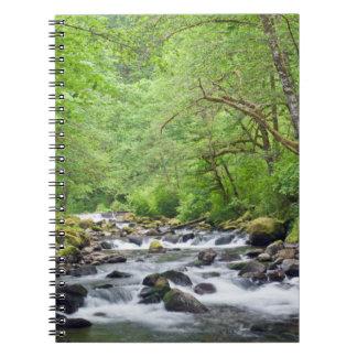米国、オレゴンのコロンビア川の峡谷、タナーの入り江4 ノートブック