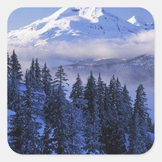米国、オレゴンの南Deschutesの国有林 スクエアシール