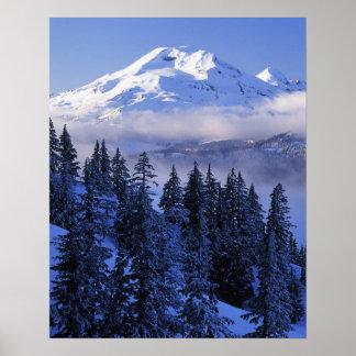 米国、オレゴンの南Deschutesの国有林 ポスター