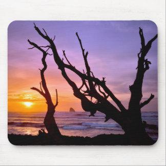 米国、オレゴンの岬Meares。 日没 マウスパッド