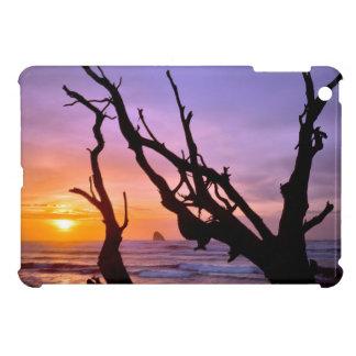 米国、オレゴンの岬Meares。 日没 iPad Miniケース
