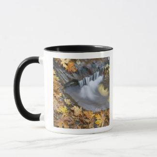 米国、オレゴンの甘い入り江。 落ちたなかえでの葉 マグカップ