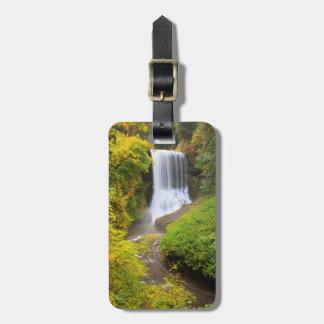 米国、オレゴンの銀製の滝の州立公園3 ラゲッジタグ