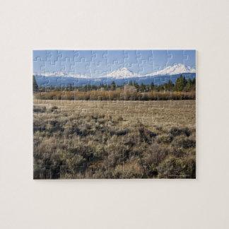 米国、オレゴンの雪で覆われた滝が付いている分野 ジグソーパズル