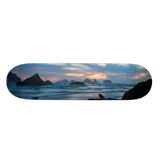米国、オレゴンのBandonのビーチ。 石のカモメ スケボー