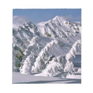 米国、オレゴンのcrater湖NP。 の下の木の弓 ノートパッド