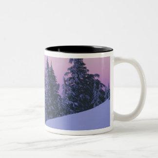 米国、オレゴンのDeschutesの国有林、薄暗がり ツートーンマグカップ