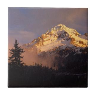 米国、オレゴンのMt.のフードの国有林 タイル