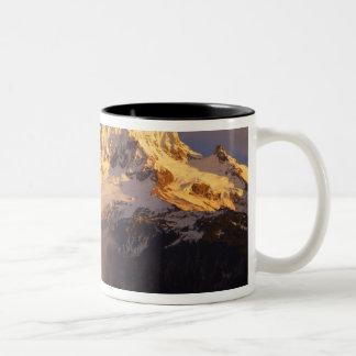 米国、オレゴンのMt.のフードの国有林。 転がること ツートーンマグカップ
