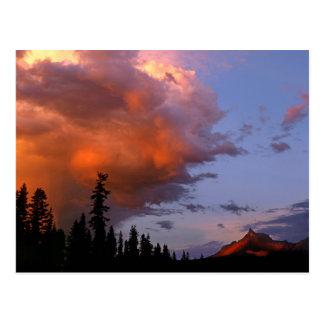 米国、オレゴンのUmpquaの国有林。 嵐2 ポストカード