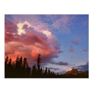 米国、オレゴンのUmpquaの国有林。 嵐 ポストカード