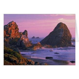 米国、オレゴン、ハリスの国家のビーチ、Brookings。 2 カード