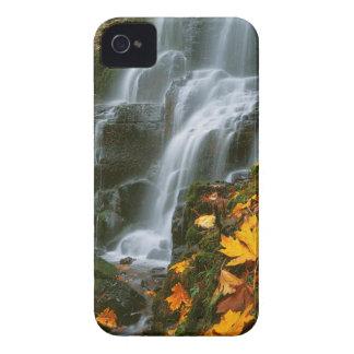 米国、オレゴン、妖精の滝、コロンビア川の峡谷 Case-Mate iPhone 4 ケース