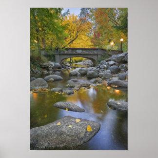 米国、オレゴン、AshlandのLithia公園。 秋 ポスター