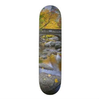 米国、オレゴン、AshlandのLithia公園。 秋 21.6cm スケートボードデッキ