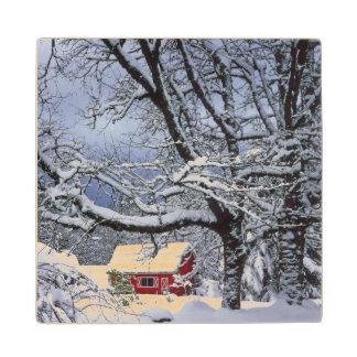 米国、オレゴン、Clackamas郡。 新しい雪カバー ウッドコースター