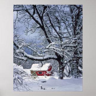 米国、オレゴン、Clackamas郡。 新しい雪カバー ポスター