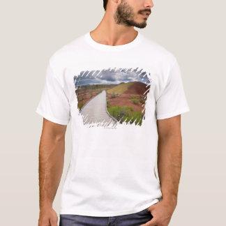 米国、オレゴン、Mitchellの色彩の鮮やかの中の細道 Tシャツ