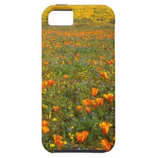 米国、カリフォルニアのカモシカの谷カリフォルニア iPhone SE/5/5s ケース