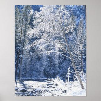 米国、カリフォルニアのヨセミテ国立公園、2 ポスター