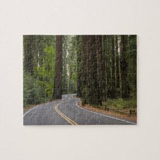 米国、カリフォルニアのレッドウッドの森林を通した道 ジグソーパズル