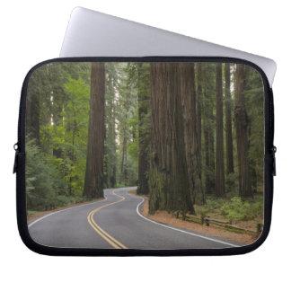 米国、カリフォルニアのレッドウッドの森林を通した道 ラップトップスリーブ