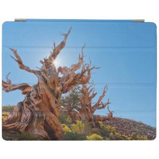 米国、カリフォルニアのInyoの国有林10 iPadスマートカバー