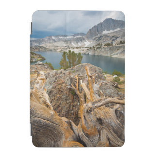 米国、カリフォルニアのInyoの国有林 iPad Miniカバー