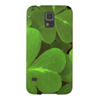 米国、カリフォルニアのMuirの森。 クローバーのクローズアップ Galaxy S5 ケース