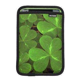 米国、カリフォルニアのMuirの森。 クローバーのクローズアップ iPad Miniスリーブ
