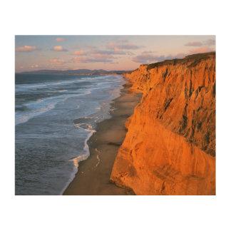 米国、カリフォルニアのPescaderoの州ビーチの崖 ウッドウォールアート