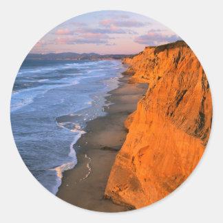 米国、カリフォルニアのPescaderoの州ビーチの崖 ラウンドシール