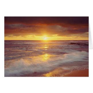 米国、カリフォルニア、サンディエゴ。 日没の崖のビーチ カード