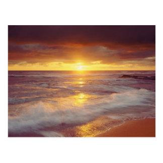 米国、カリフォルニア、サンディエゴ。 日没の崖のビーチ ポストカード