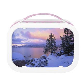 米国、カリフォルニア。 タホ湖の冬の日。 ランチボックス