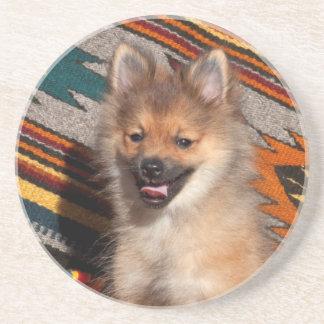 米国、カリフォルニア。 ポメラニア犬のモデル コースター