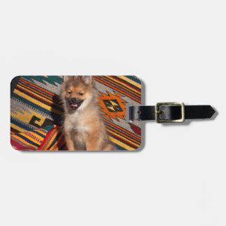 米国、カリフォルニア。 ポメラニア犬のモデル ラゲッジタグ