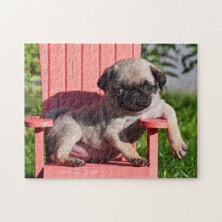 米国、カリフォルニア。 傾いているパグの子犬 ジグソーパズル