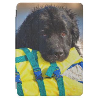 米国、カリフォルニア。 救命胴衣が付いているニューファウンドランド iPad AIR カバー