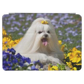 米国、カリフォルニア。 花にあっているマルチーズ iPad AIR カバー