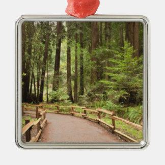 米国、カリフォルニア、Marin郡のMuirの森 メタルオーナメント