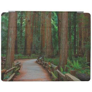 米国、カリフォルニア。 Muirのレッドウッド間の道 iPadスマートカバー